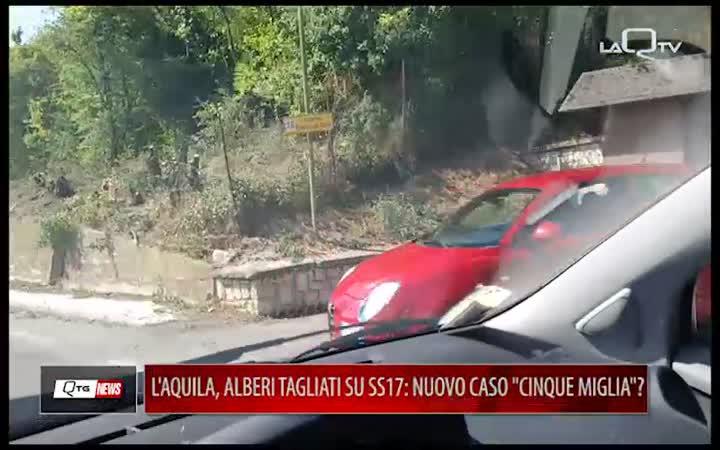 L'AQUILA, ALBERI TAGLIATI SULLA SS17: NUOVO CASO