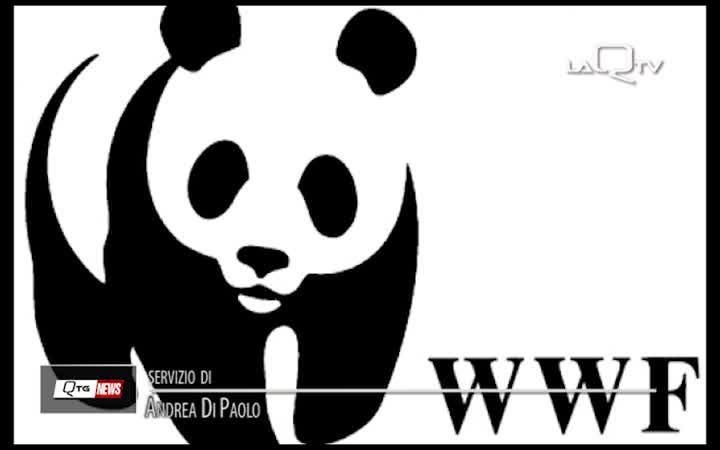 WWF ABRUZZO, SU 5G MANCANO CERTEZZE