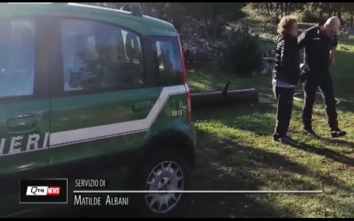 L'AQUILA:CUCCIOLI PASTORE ABRUZZESE SEGREGATI IN GABBIA PER GIORNI