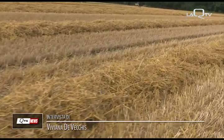 AGRICOLTURA: LA VOCE DEI COLTIVATORI